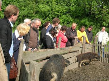 2009-05-17.bustour.kinder.und.familienfreundliche